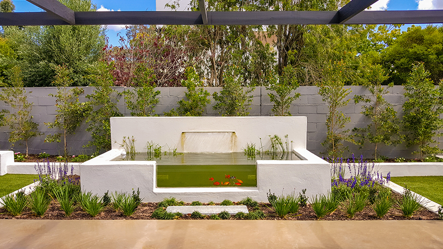 Landscaping Company in Cape Town