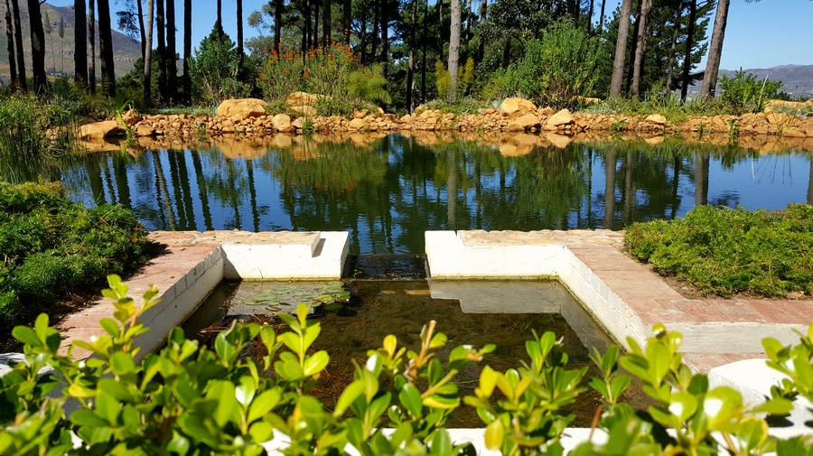 Water Feature Landscaping Design